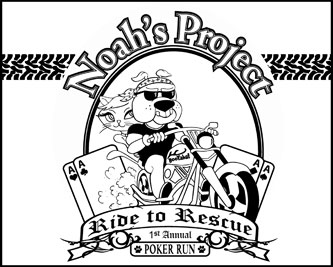 noah's-project